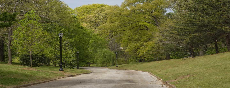 Homes For Sale In Grant Park Atlanta Georgia